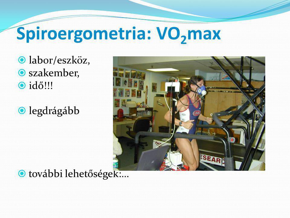 Spiroergometria: VO 2 max  labor/eszköz,  szakember,  idő!!.