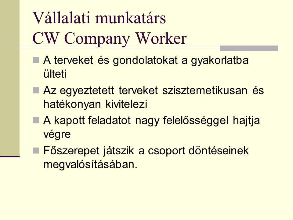 Vállalati munkatárs CW Company Worker  A terveket és gondolatokat a gyakorlatba ülteti  Az egyeztetett terveket szisztemetikusan és hatékonyan kivit