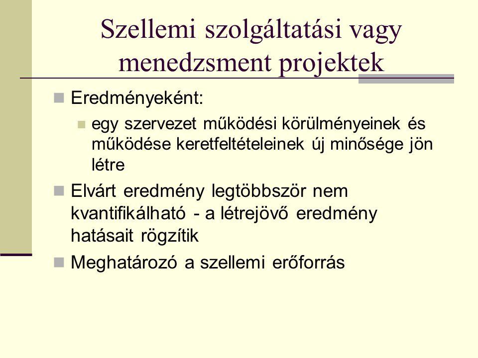 Szellemi szolgáltatási vagy menedzsment projektek  Eredményeként:  egy szervezet működési körülményeinek és működése keretfeltételeinek új minősége