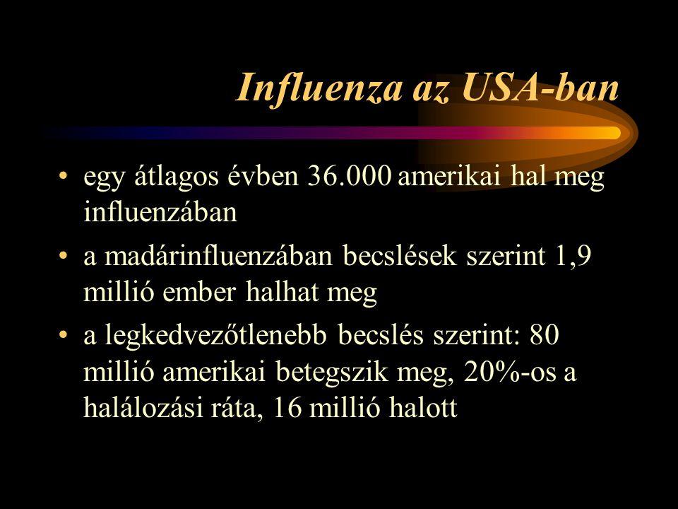 Influenza az USA-ban •egy átlagos évben 36.000 amerikai hal meg influenzában •a madárinfluenzában becslések szerint 1,9 millió ember halhat meg •a legkedvezőtlenebb becslés szerint: 80 millió amerikai betegszik meg, 20%-os a halálozási ráta, 16 millió halott