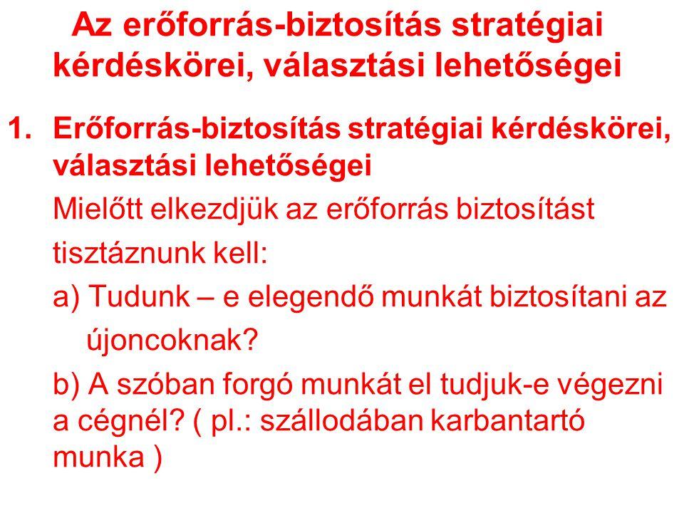 Az erőforrás-biztosítás stratégiai kérdéskörei, választási lehetőségei 1.Erőforrás-biztosítás stratégiai kérdéskörei, választási lehetőségei Mielőtt e