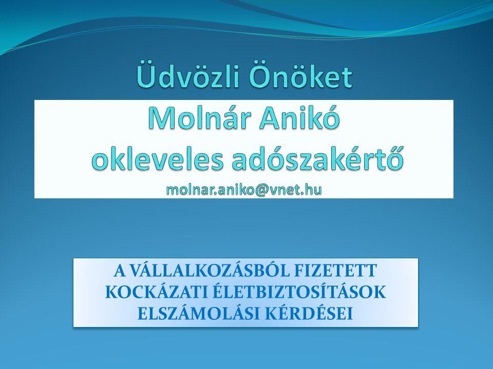 A KOCKÁZATI ÉLETBIZTOSÍTÁSOK ADÓKÖRNYEZETE 2.