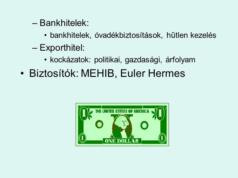 –Bankhitelek: •bankhitelek, óvadékbiztosítások, hűtlen kezelés –Exporthitel: •kockázatok: politikai, gazdasági, árfolyam •Biztosítók: MEHIB, Euler Her