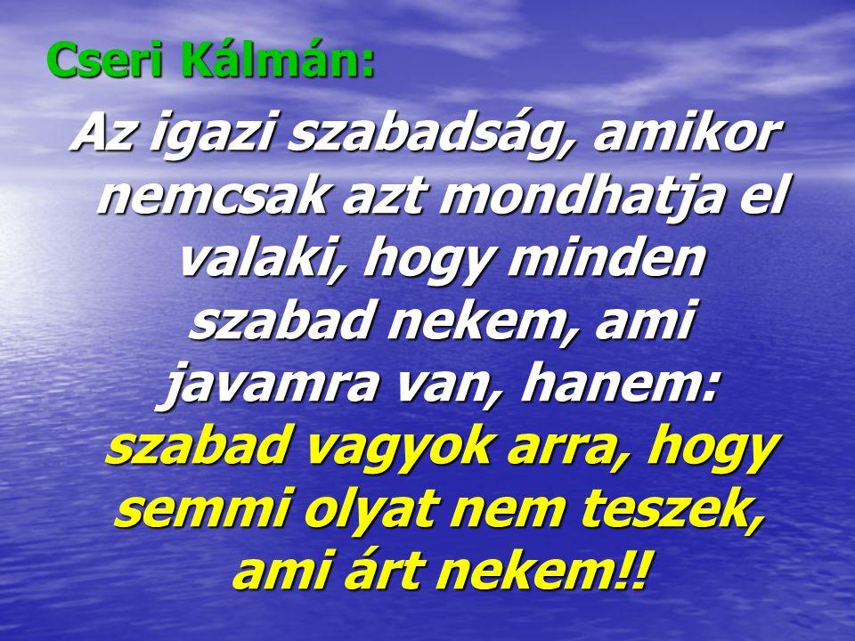 Cseri Kálmán: Az igazi szabadság, amikor nemcsak azt mondhatja el valaki, hogy minden szabad nekem, ami javamra van, hanem: szabad vagyok arra, hogy s
