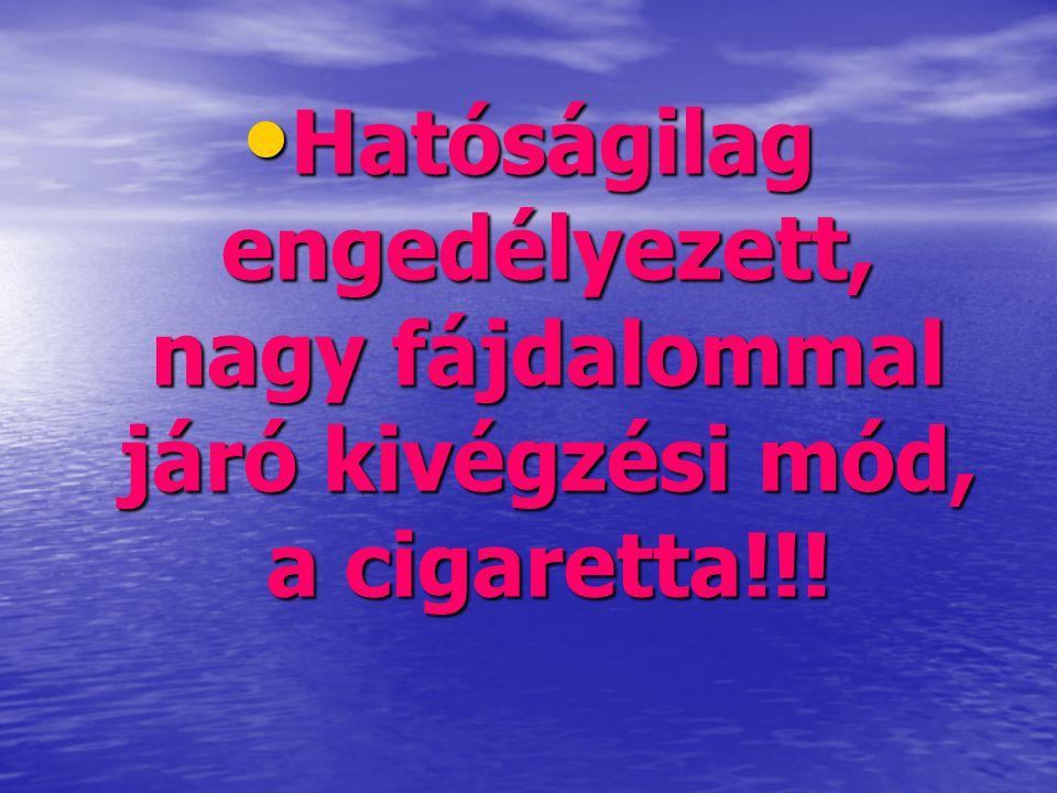 • Hatóságilag engedélyezett, nagy fájdalommal járó kivégzési mód, a cigaretta!!!