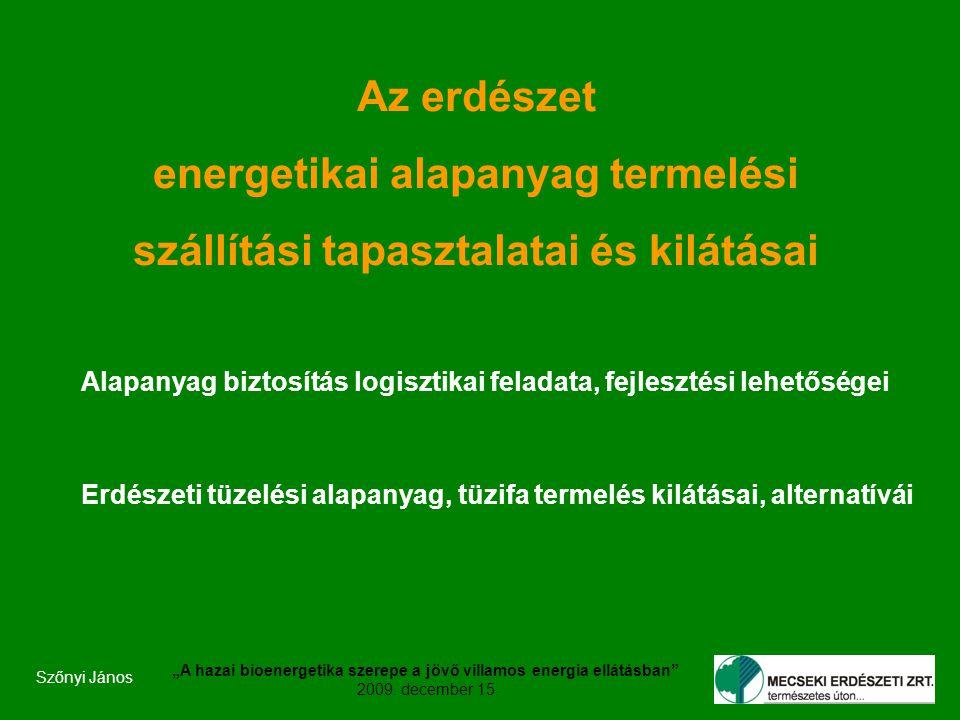 """Szőnyi János """"A hazai bioenergetika szerepe a jövő villamos energia ellátásban 2009."""