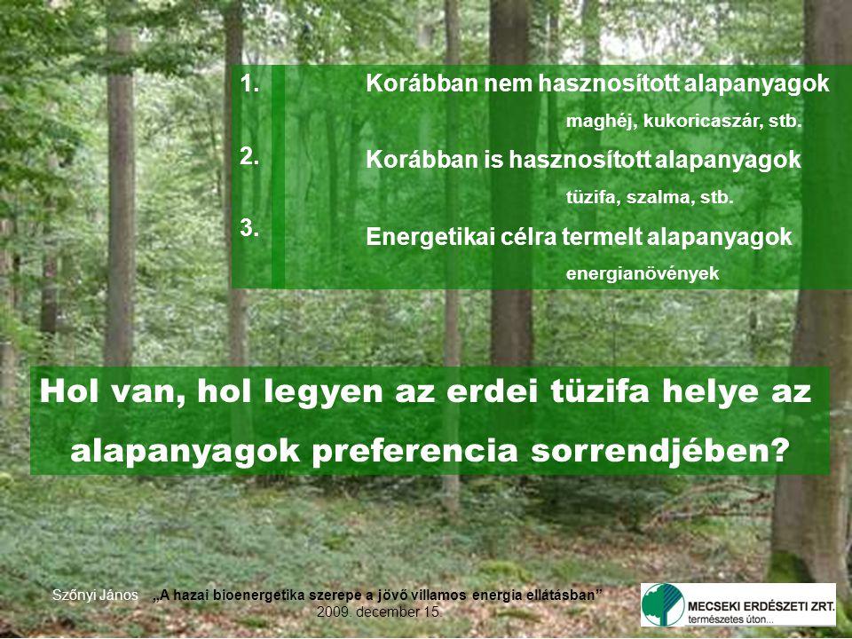 """Szőnyi János""""A hazai bioenergetika szerepe a jövő villamos energia ellátásban 2009."""