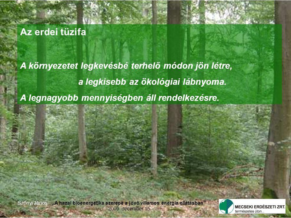 """2 Szőnyi János""""A hazai bioenergetika szerepe a jövő villamos energia ellátásban 2009."""