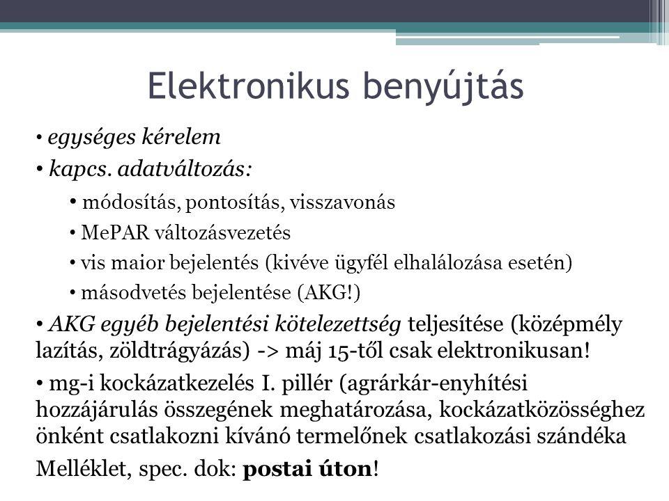Elektronikus benyújtás • egységes kérelem • kapcs.