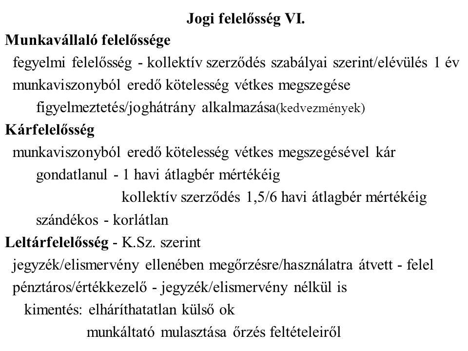 Jogi felelősség VI.