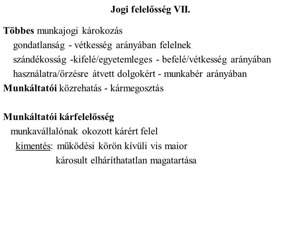 Jogi felelősség VII.
