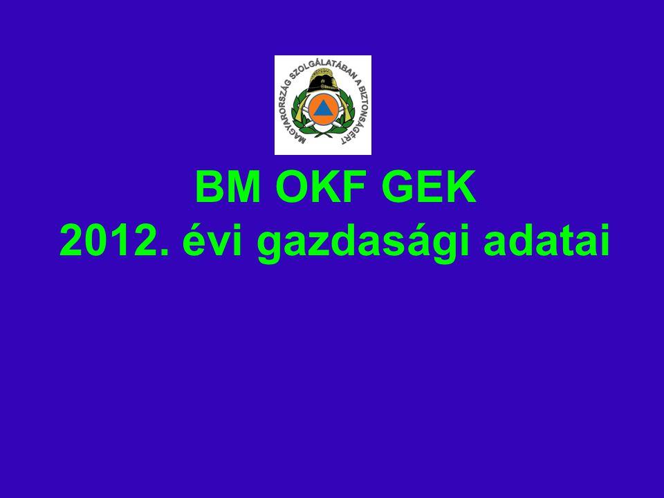 BM OKF GEK 2012. évi gazdasági adatai