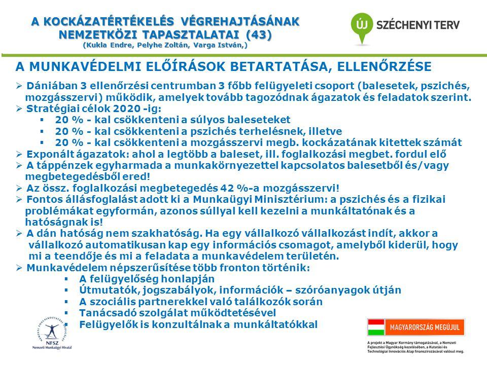 A KOCKÁZATÉRTÉKELÉS VÉGREHAJTÁSÁNAK NEMZETKÖZI TAPASZTALATAI (43) (Kukla Endre, Pelyhe Zoltán, Varga István,) A MUNKAVÉDELMI ELŐÍRÁSOK BETARTATÁSA, ELLENŐRZÉSE  Dániában 3 ellenőrzési centrumban 3 főbb felügyeleti csoport (balesetek, pszichés, mozgásszervi) működik, amelyek tovább tagozódnak ágazatok és feladatok szerint.