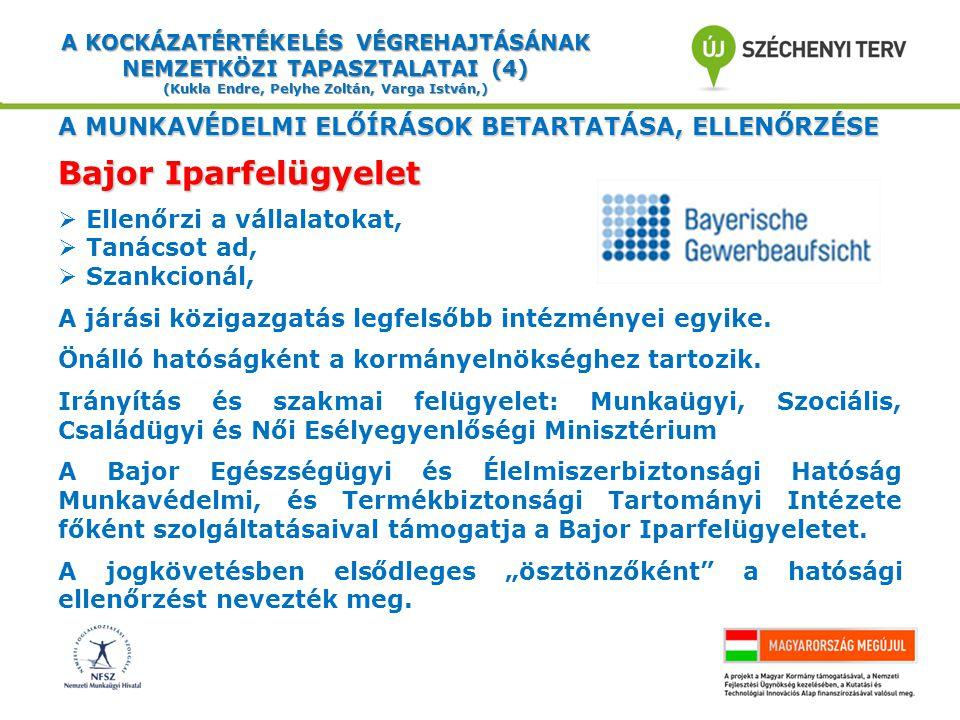 A KOCKÁZATÉRTÉKELÉS VÉGREHAJTÁSÁNAK NEMZETKÖZI TAPASZTALATAI (15) (Kukla Endre, Pelyhe Zoltán, Varga István,) BALESETBIZTOSÍTÁSI RENDSZER - 1 BB=a kötelező egészségbizt.