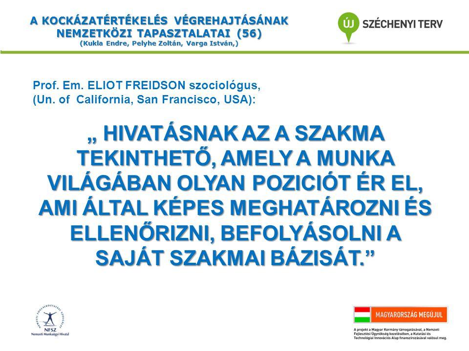 A KOCKÁZATÉRTÉKELÉS VÉGREHAJTÁSÁNAK NEMZETKÖZI TAPASZTALATAI (56) (Kukla Endre, Pelyhe Zoltán, Varga István,) Prof.