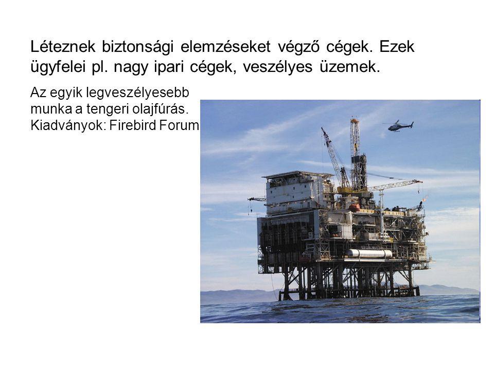 Léteznek biztonsági elemzéseket végző cégek. Ezek ügyfelei pl. nagy ipari cégek, veszélyes üzemek. Az egyik legveszélyesebb munka a tengeri olajfúrás.