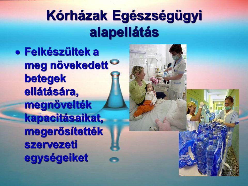 Kórházak Egészségügyi alapellátás  Felkészültek a meg növekedett betegek ellátására, megnövelték kapacitásaikat, megerősítették szervezeti egységeike