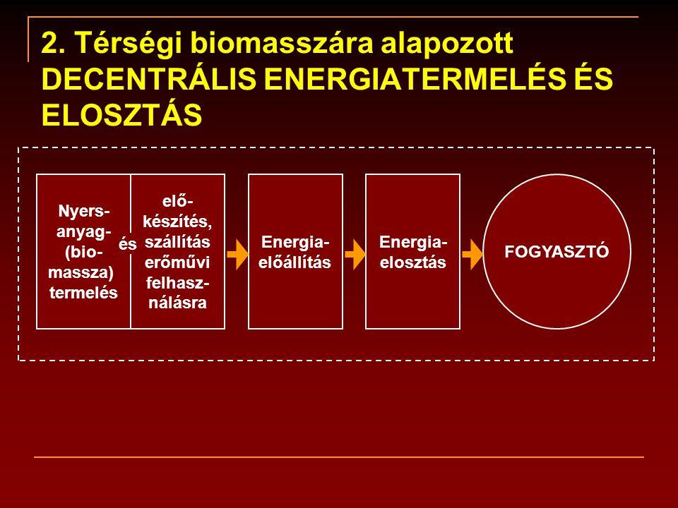 2. Térségi biomasszára alapozott DECENTRÁLIS ENERGIATERMELÉS ÉS ELOSZTÁS FOGYASZTÓ Nyers- anyag- (bio- massza) termelés elő- készítés, szállítás erőmű