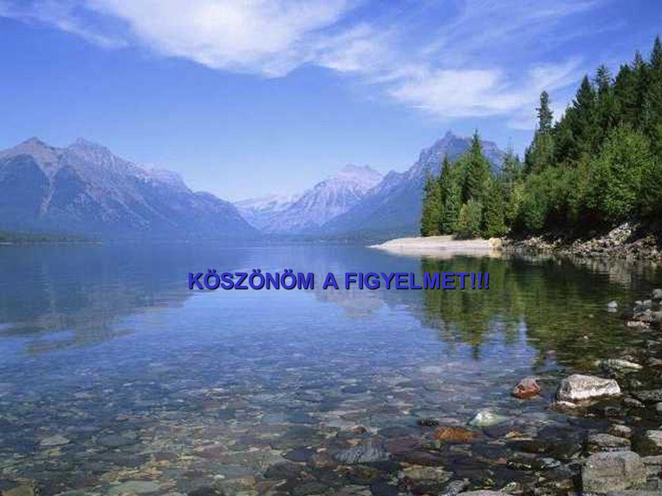 ©DRKE MKVKOK Könyvvizsgáló hallgatók képzése 2010.179 KÖSZÖNÖM A FIGYELMET!!!