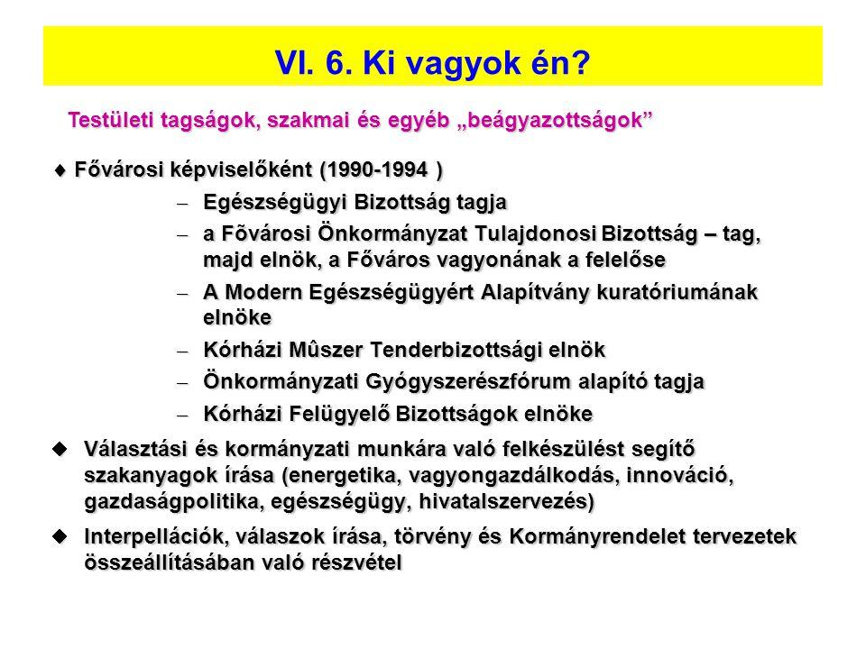  Fővárosi képviselőként (1990-1994 ) – Egészségügyi Bizottság tagja – a Fõvárosi Önkormányzat Tulajdonosi Bizottság – tag, majd elnök, a Főváros vagy
