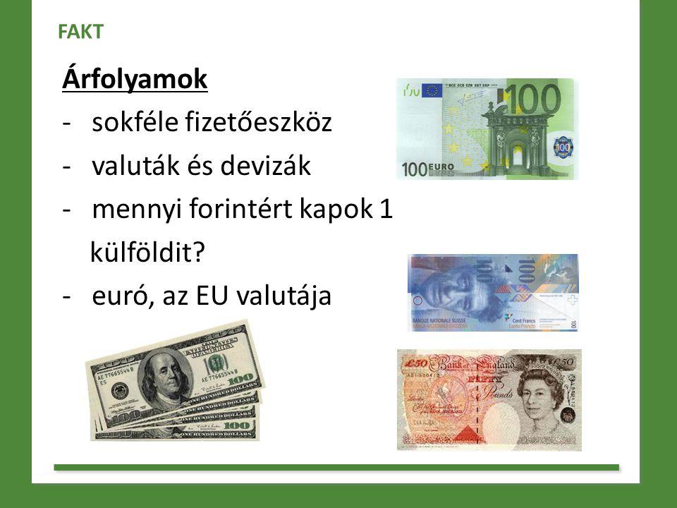 Árfolyamok - sokféle fizetőeszköz - valuták és devizák - mennyi forintért kapok 1 külföldit? - euró, az EU valutája FAKT