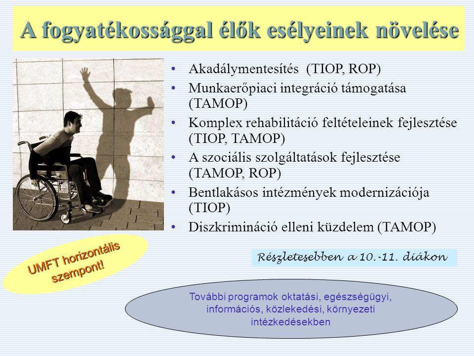 A fogyatékossággal élők esélyeinek növelése UMFT horizontális szempont.