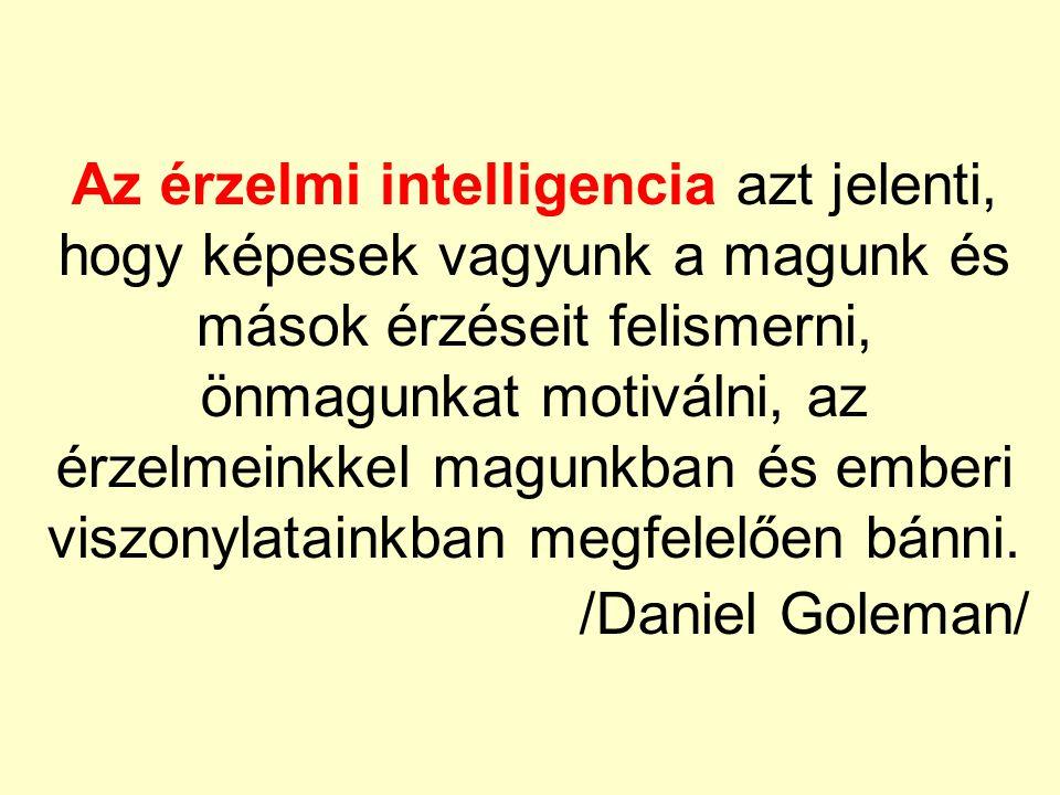 Az érzelmi intelligencia azt jelenti, hogy képesek vagyunk a magunk és mások érzéseit felismerni, önmagunkat motiválni, az érzelmeinkkel magunkban és