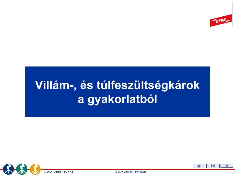 © 2004 DEHN + SÖHNEÜSS-Kompakt Schäden Villám-, és túlfeszültségkárok a gyakorlatból
