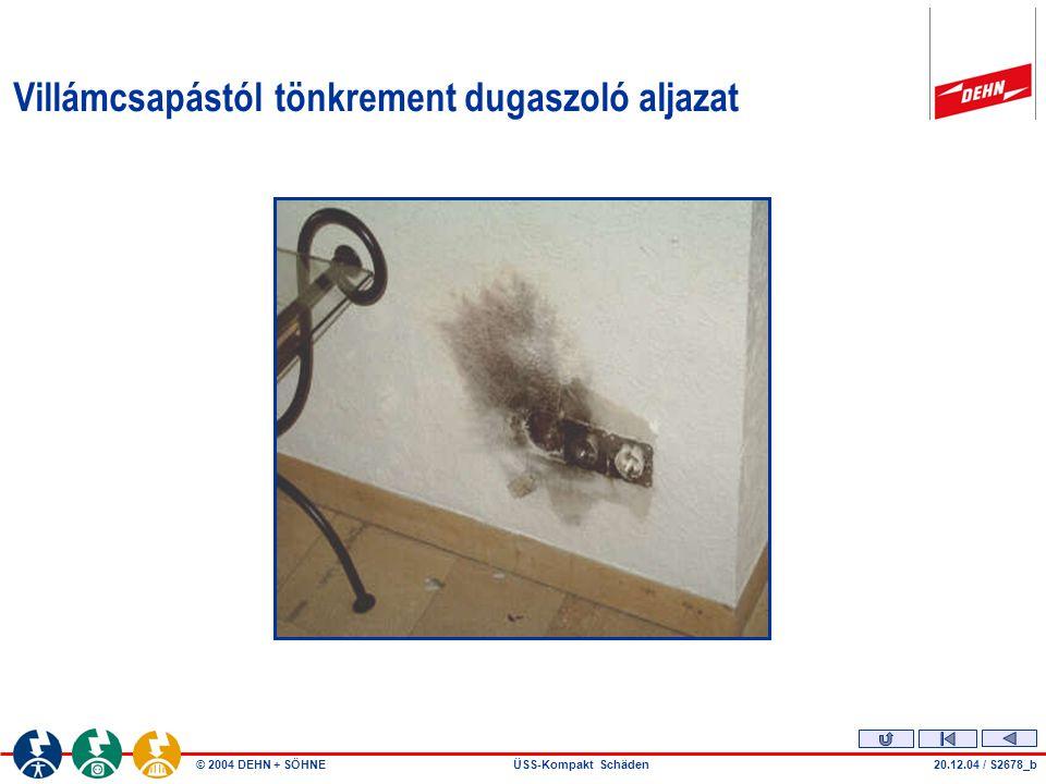 © 2004 DEHN + SÖHNEÜSS-Kompakt Schäden Villámcsapástól tönkrement dugaszoló aljazat 20.12.04 / S2678_b