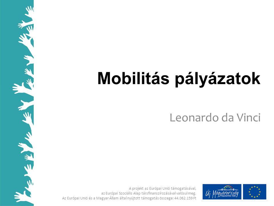 Mobilitás pályázatok Leonardo da Vinci A projekt az Európai Unió támogatásával, az Európai Szociális Alap társfinanszírozásával valósul meg.