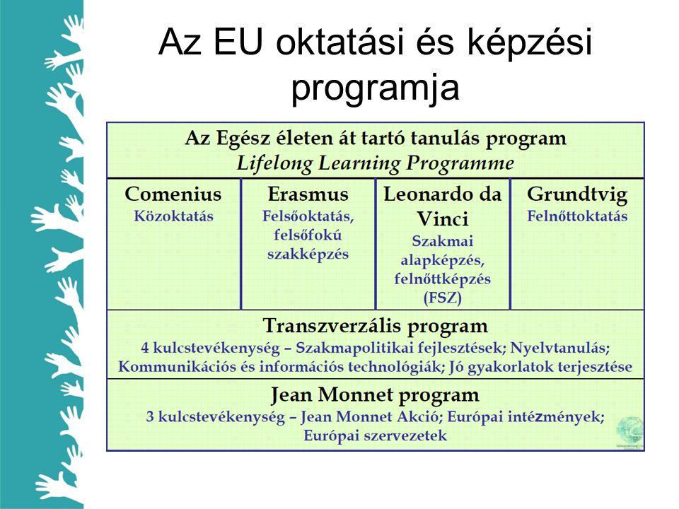Mobilitás • Külföldi szakmai gyakorlat – diákok/munkavállalók – Nyelvtanulás – Munka világának megismerése – Szociális, kommunikációs készségek változása • Külföldi szakmai tapasztalatszerzés – szakoktatók – Nemzetközi együttműködés lehetősége – Új/más szakmai eljárások – Új oktatás módszertan – Nyelvtanulás