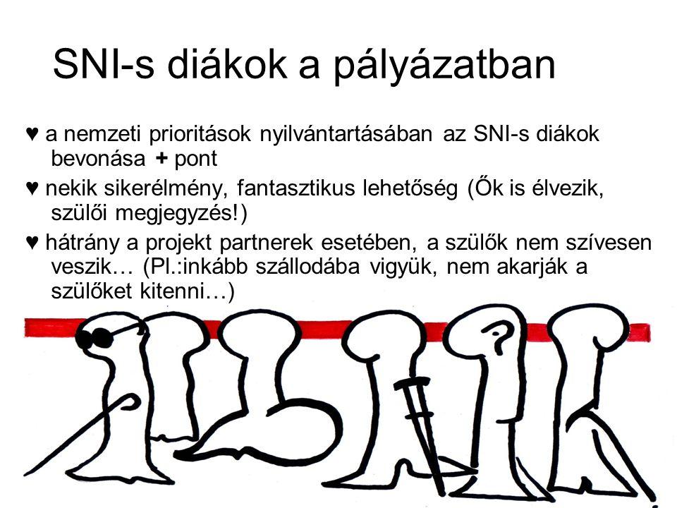 SNI-s diákok a pályázatban ♥ a nemzeti prioritások nyilvántartásában az SNI-s diákok bevonása + pont ♥ nekik sikerélmény, fantasztikus lehetőség (Ők is élvezik, szülői megjegyzés!) ♥ hátrány a projekt partnerek esetében, a szülők nem szívesen veszik… (Pl.:inkább szállodába vigyük, nem akarják a szülőket kitenni…)
