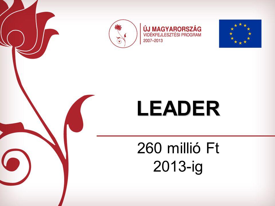 LEADER LEADER 260 millió Ft 2013-ig