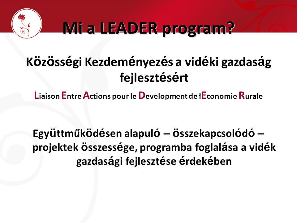 Mi a LEADER program.