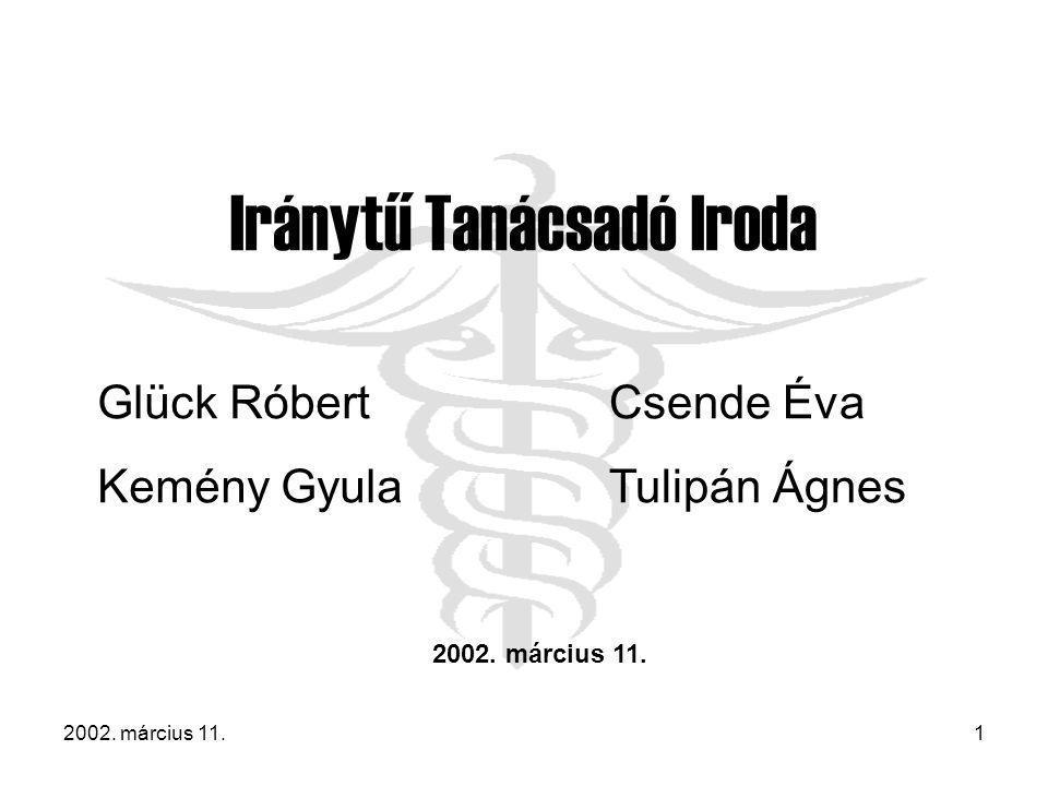 2002. március 11.1 Iránytű Tanácsadó Iroda Glück Róbert Kemény Gyula Csende Éva Tulipán Ágnes 2002. március 11.