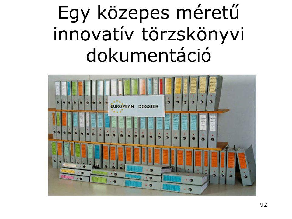 Egy közepes méretű innovatív törzskönyvi dokumentáció 92