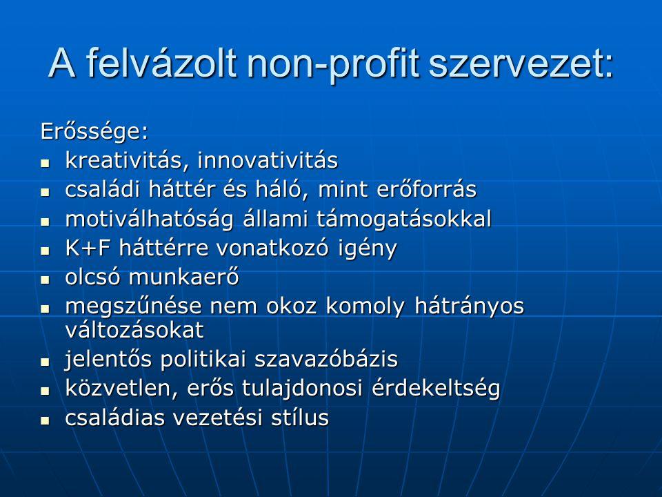 A felvázolt non-profit szervezet: Erőssége:  kreativitás, innovativitás  családi háttér és háló, mint erőforrás  motiválhatóság állami támogatásokk