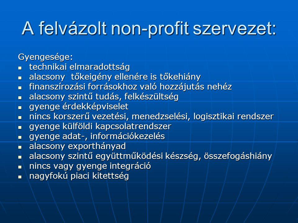 A felvázolt non-profit szervezet: Gyengesége:  technikai elmaradottság  alacsony tőkeigény ellenére is tőkehiány  finanszírozási forrásokhoz való h