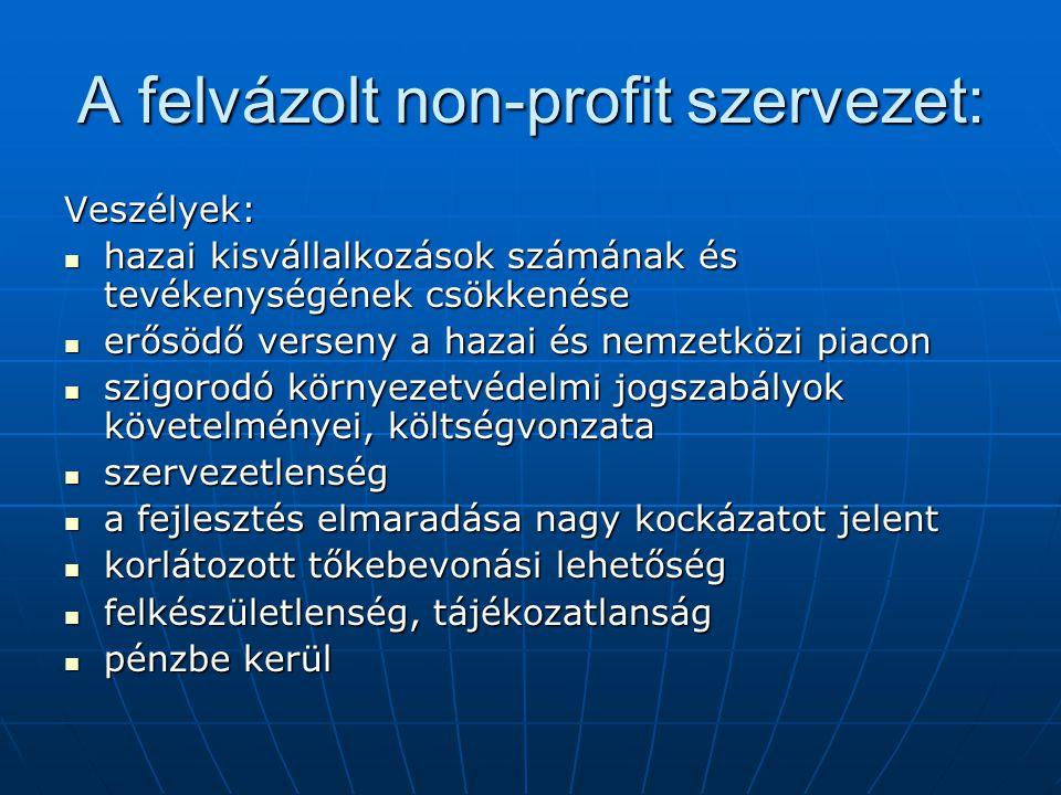 A felvázolt non-profit szervezet: Veszélyek:  hazai kisvállalkozások számának és tevékenységének csökkenése  erősödő verseny a hazai és nemzetközi p