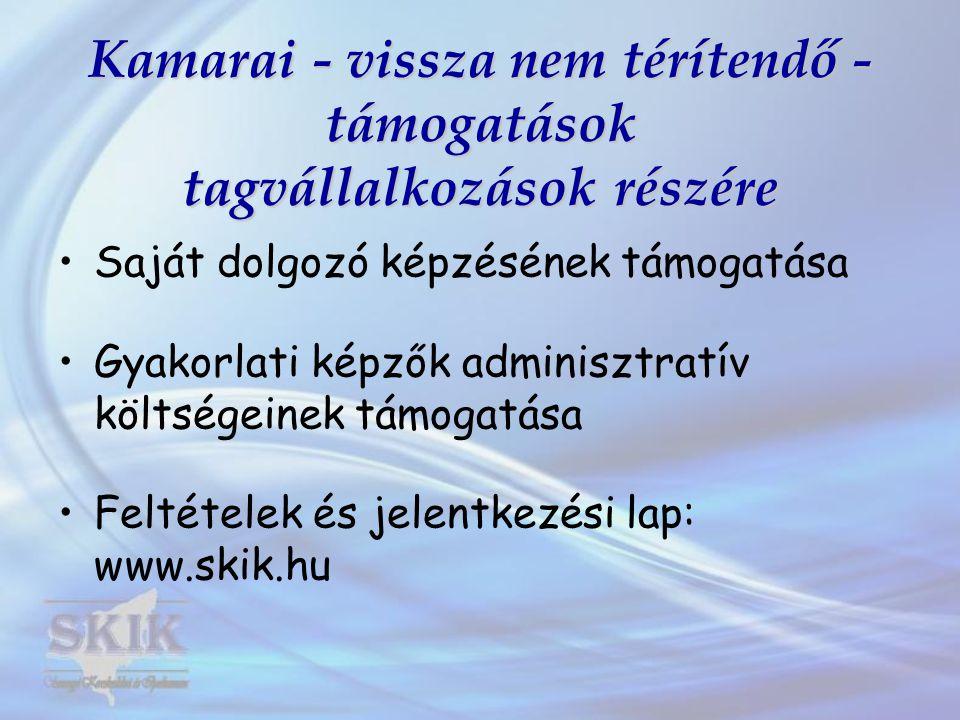Kamarai - vissza nem térítendő - támogatások tagvállalkozások részére •Saját dolgozó képzésének támogatása •Gyakorlati képzők adminisztratív költségeinek támogatása •Feltételek és jelentkezési lap: www.skik.hu