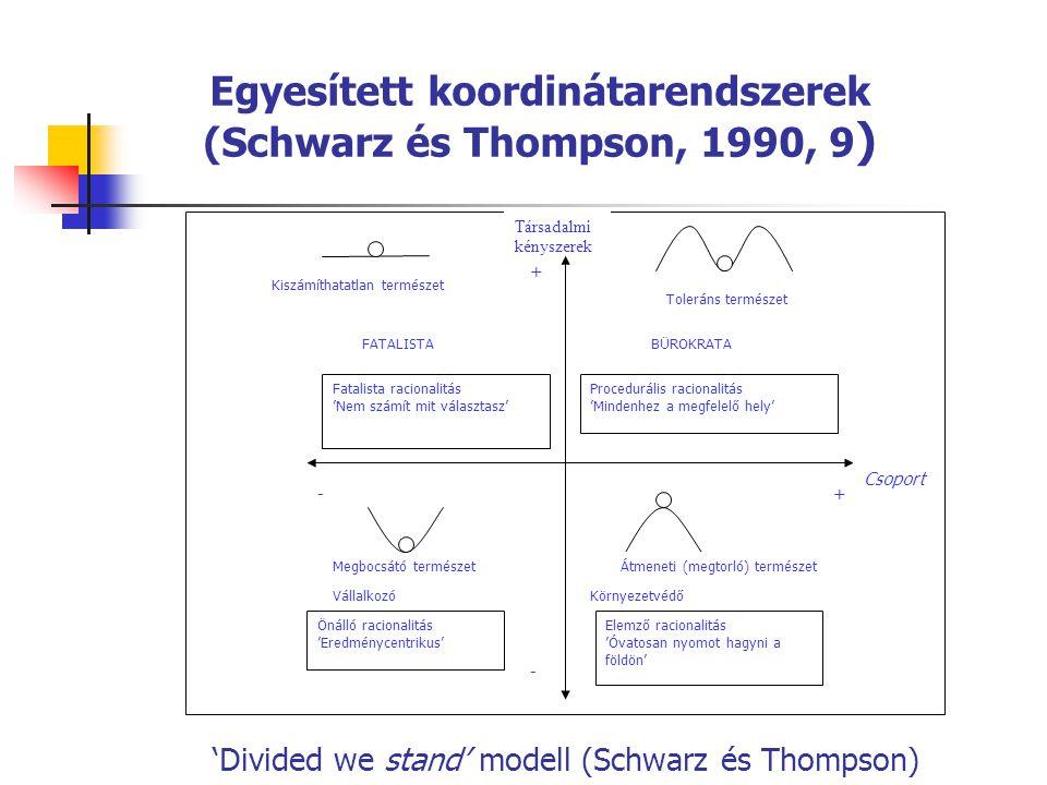 'Divided we stand' modell (Schwarz és Thompson) Egyesített koordinátarendszerek (Schwarz és Thompson, 1990, 9 ) Önálló racionalitás 'Eredménycentrikus
