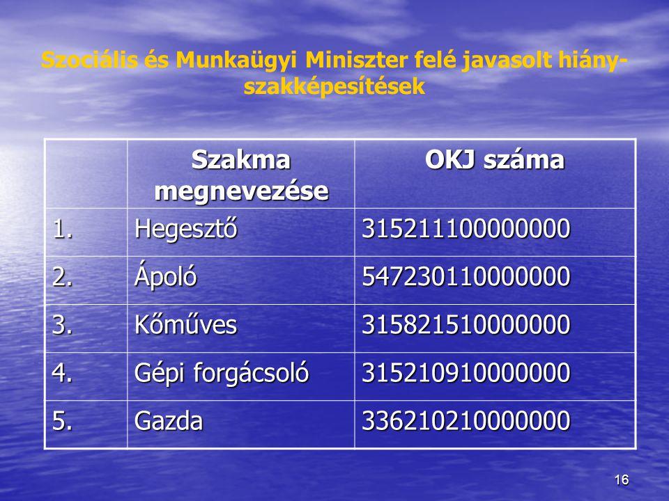 16 Szociális és Munkaügyi Miniszter felé javasolt hiány- szakképesítések Szakma megnevezése OKJ száma 1.Hegesztő315211100000000 2.Ápoló547230110000000