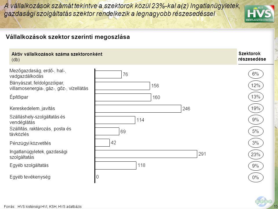 15 Forrás:HVS kistérségi HVI, KSH, HVS adatbázis Vállalkozások szektor szerinti megoszlása A vállalkozások számát tekintve a szektorok közül 23%-kal a