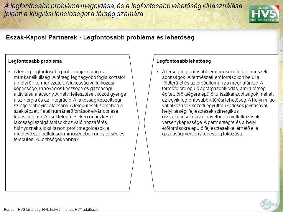 4 Észak-Kaposi Partnerek - Legfontosabb probléma és lehetőség A legfontosabb probléma megoldása, és a legfontosabb lehetőség kihasználása jelenti a kiugrási lehetőséget a térség számára Forrás:HVS kistérségi HVI, helyi érintettek, HVT adatbázis Legfontosabb problémaLegfontosabb lehetőség ▪A térség legfontosabb problémája a magas munkanélküliség.
