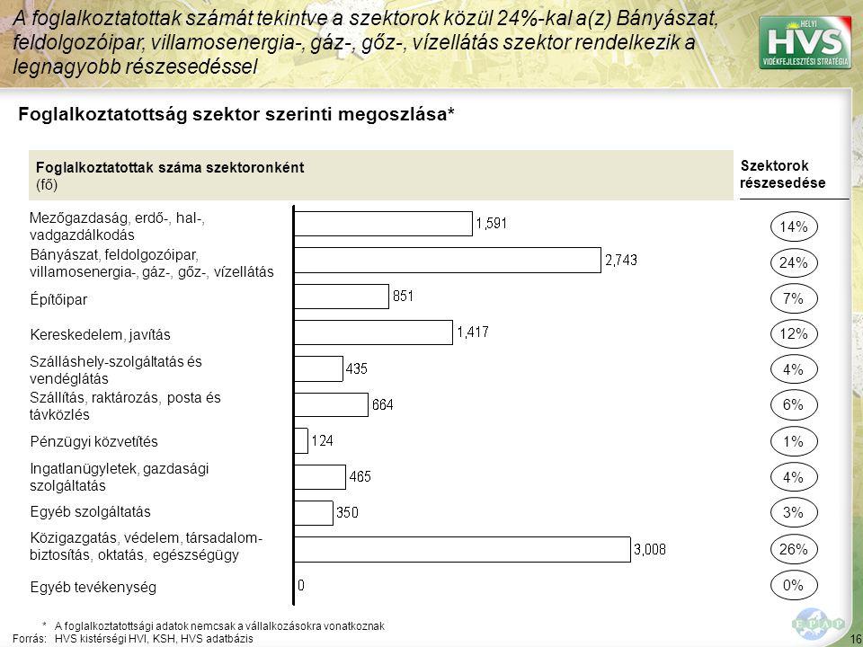 16 Foglalkoztatottság szektor szerinti megoszlása* A foglalkoztatottak számát tekintve a szektorok közül 24%-kal a(z) Bányászat, feldolgozóipar, villa