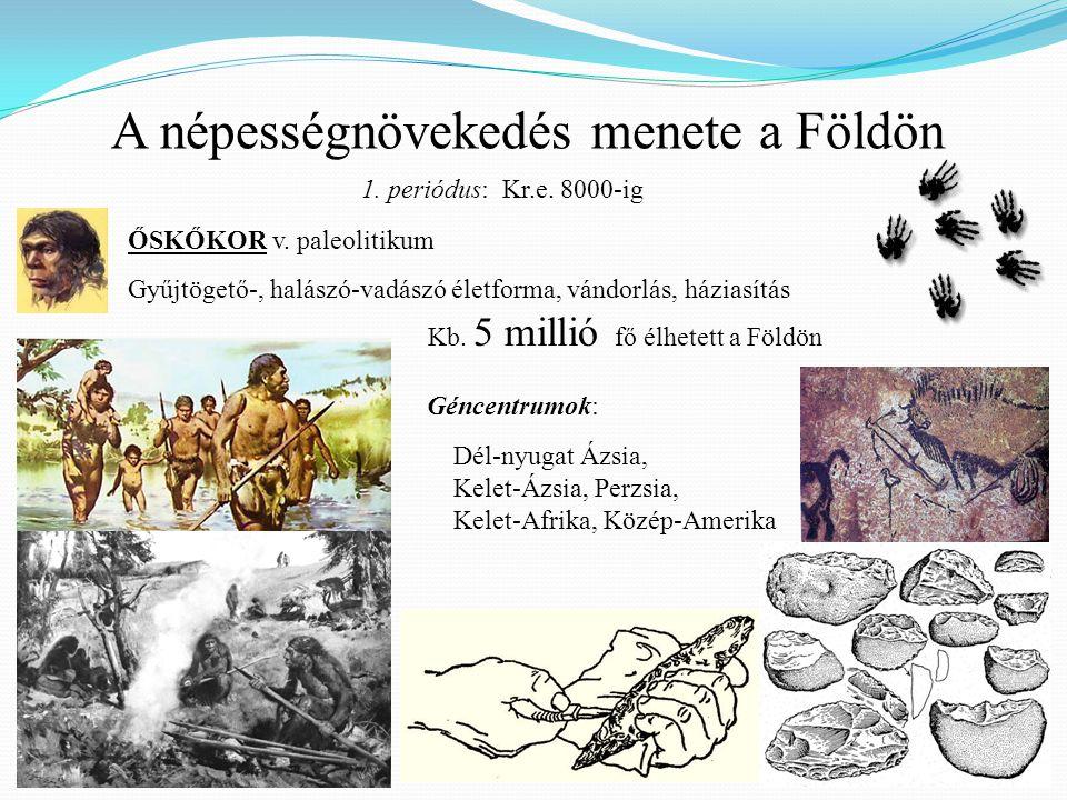 ŐSKŐKOR v. paleolitikum Gyűjtögető-, halászó-vadászó életforma, vándorlás, háziasítás A népességnövekedés menete a Földön Kb. 5 millió fő élhetett a F