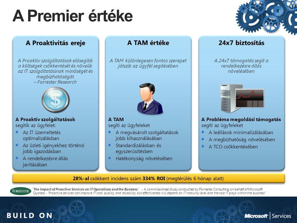 A TAM különlegesen fontos szerepet játszik az ügyfél segítésében A TAM segíti az ügyfeleket A megvásárolt szolgáltatások jobb kihasználásában Standard