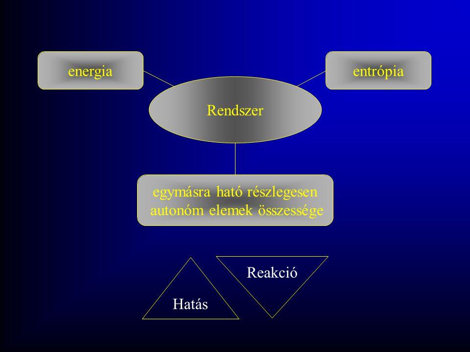 Rendszer egymásra ható részlegesen autonóm elemek összessége entrópia Hatás Reakció energia
