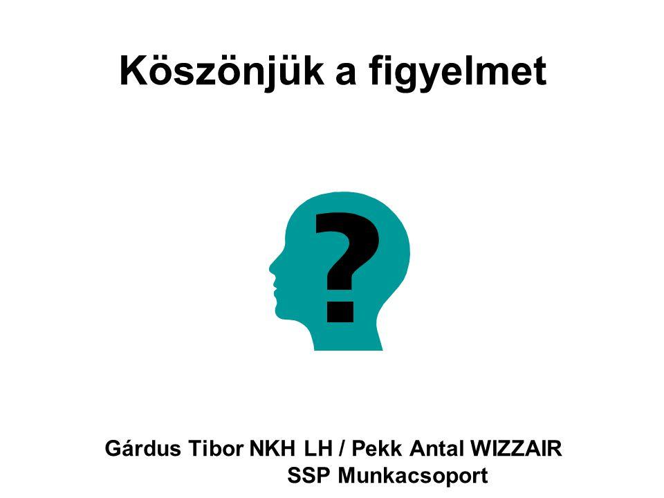 Köszönjük a figyelmet Gárdus Tibor NKH LH / Pekk Antal WIZZAIR SSP Munkacsoport