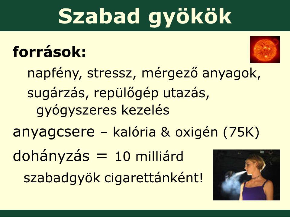 Szabad gyökök források: napfény, stressz, mérgező anyagok, sugárzás, repülőgép utazás, gyógyszeres kezelés anyagcsere – kalória & oxigén (75K) dohányzás = 10 milliárd szabadgyök cigarettánként!